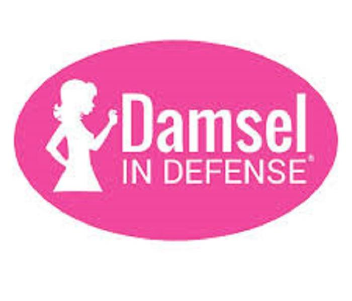 Community Girls Night Out Event:  Damsels in Defense