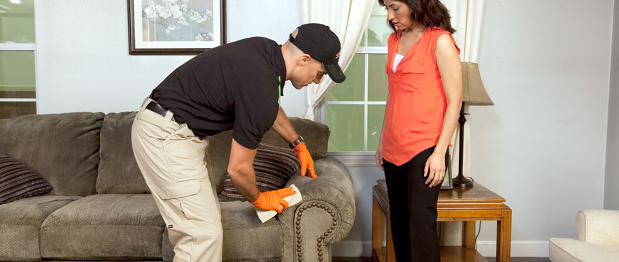 Milwaukie, OR carpet upholstery cleaning
